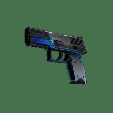 P250 Валентность Пистолет, Армейское Качество Износ: После Полевых Испытаний
