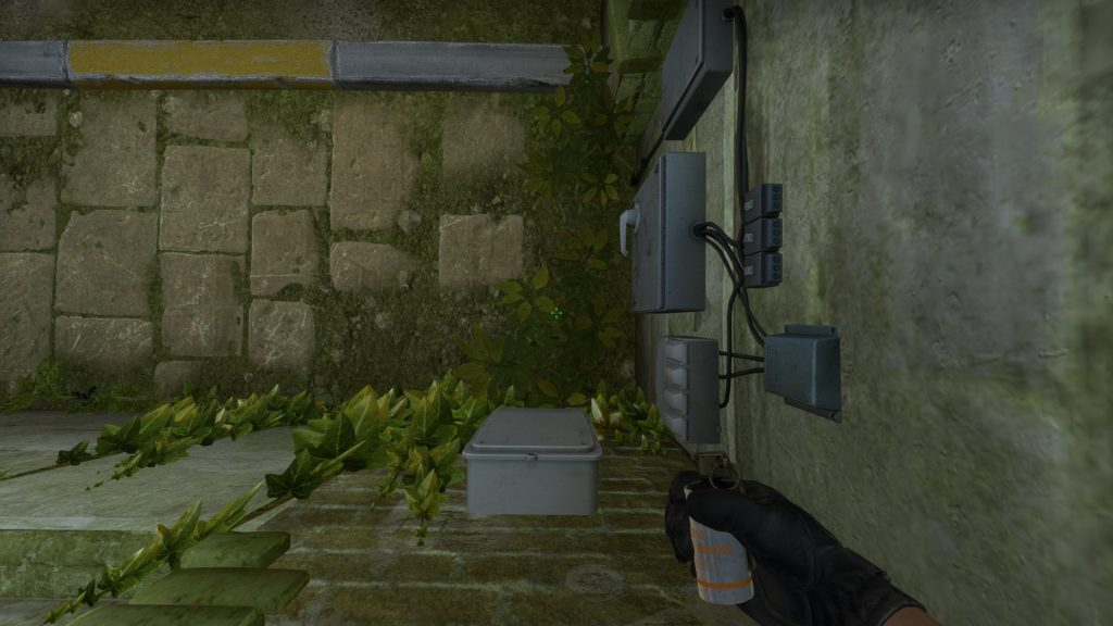 Smok V Растение длиной